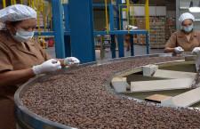 El café peruano conquista 44 mercados del mundo y el año pasado se exportaron más de 3 millones de sacos